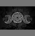 white pentagram with leaves vector image vector image