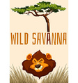 Wild Savanna with lion and tree vector image vector image