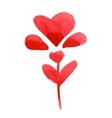 Watercolor heart flower vector image