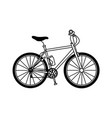 bicycle sport transport recreation activity vector image vector image