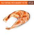 delicious steak salmon fish isolated on white vector image