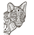 fox head coloring book for adults vector image