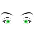 hypnotizing green eyes vector image