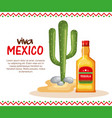 mexican culture cactus with tequila vector image vector image