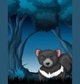 a tasmanian devil in tropical rainforest vector image vector image