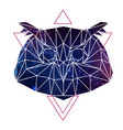 abstract polygonal tirangle animal owl vector image