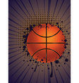 Basketball Ball on Rays Background vector image vector image