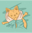 cat cute vector image vector image