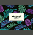 tropical leaves plants and exotic label vector image