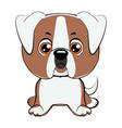 a of an american bulldog puppy vector image