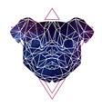 abstract polygonal tirangle animal pug-dog vector image