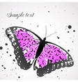 background with leopard butterfly vector image
