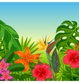 Background with stylized tropical plants leaves vector image vector image