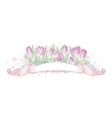 Hand drawn crocuses with ribbon vector image vector image