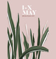 minimalist botanical card greenery card template vector image vector image