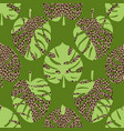 monstera leaves on leopard background seamless vector image vector image
