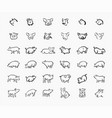 pig sketch icon set for web mobile and vector image vector image