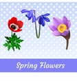 Three icons of spring flowers vector image