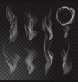 smoke isolated on transparent background vector image