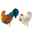 3d design for hen and rooster vector image vector image