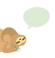 cute character sloth vector image