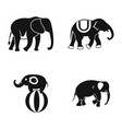 elephant icon set simple style vector image vector image