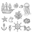 nautical elements ocean fish shells boats ships vector image