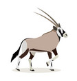 african animal cute oryx antelope gazelle vector image