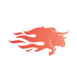 bull fire logo icon for branding car wrap decal vector image vector image
