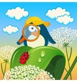 Penguin is studying insects vector image vector image