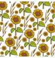 sunflowers and wheat spikelet autumn harvesting vector image vector image