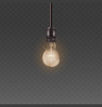 ceiling lamp light bulb with bright warm light vector image vector image