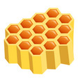 honeycomb part icon cartoon style vector image vector image