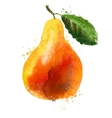 pear logo design template fruit or food icon vector image vector image