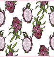 seamless pattern with dragonfruit or pitahaya vector image vector image