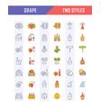 set flat line icons grape vector image vector image