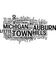 auburn hills michigan text background word cloud vector image vector image