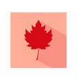 Autumn leaf icon vector image