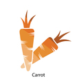 Carrot icon vector image vector image