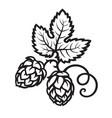 hop cones with leaf icon hand drawn vector image vector image