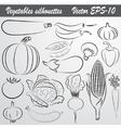 sketch drawing set of vegetables vector image