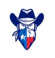 texan bandit texas flag bandana mascot vector image