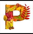 autumn stylized alphabet with foliage letter p vector image vector image