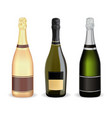 bottles of champagne set vector image vector image