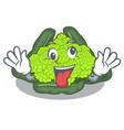 crazy roman cauliflower isolated on the mascot vector image