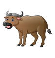 cute buffalo cartoon vector image