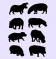 hippo silhouette vector image vector image