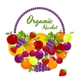 Organic Market colorful poster design vector image
