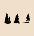 silhouette different pine trees pine trees set vector image vector image