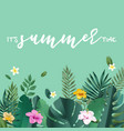summer concept vector image vector image